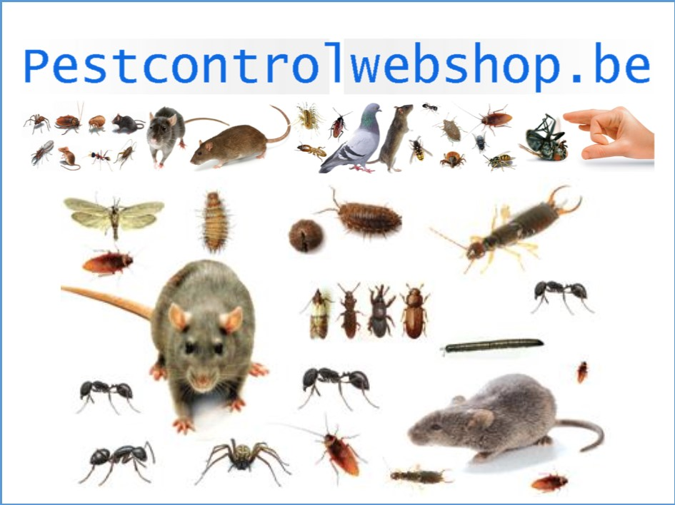 Pestcontrolwebshop